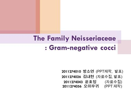 The Family Neisseriaceae : Gram-negative cocci