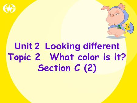 Unit 2 Looking different Topic 2 What color is it? Section C (2)