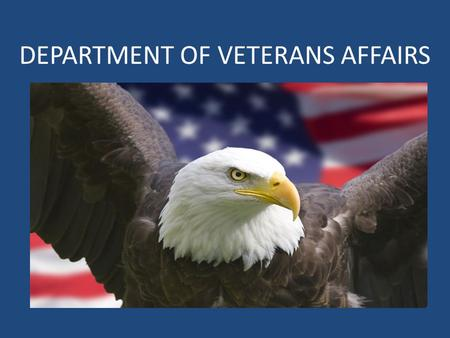 DEPARTMENT OF VETERANS AFFAIRS. VISN 7 Footprint  Square Miles: 121,029  Veteran Enrollees: 568,506 (approximate as of FY13)  States: 3  Senators: