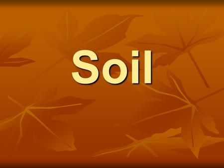 Soil. What is soil? Soil is a mixture of bits of weathered rock, humus, water, and air. Soil is a mixture of bits of weathered rock, humus, water, and.