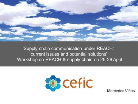 'Supply chain communication under REACH: current issues and potential solutions' Workshop on REACH & supply chain on 25-26 April Mercedes Viñas.