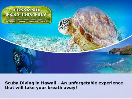 Scuba Diving in Hawaii - An unforgetable experience that will take your breath away!