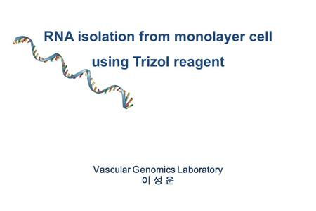 RNA isolation from monolayer cell Vascular Genomics Laboratory