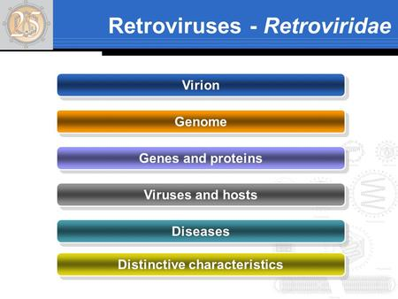 Retroviruses - Retroviridae Virion Genome Genes and proteins Viruses and hosts Diseases Distinctive characteristics.