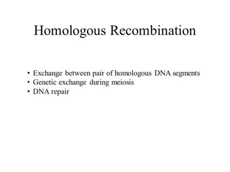 Homologous Recombination Exchange between pair of homologous DNA segments Genetic exchange during meiosis DNA repair.