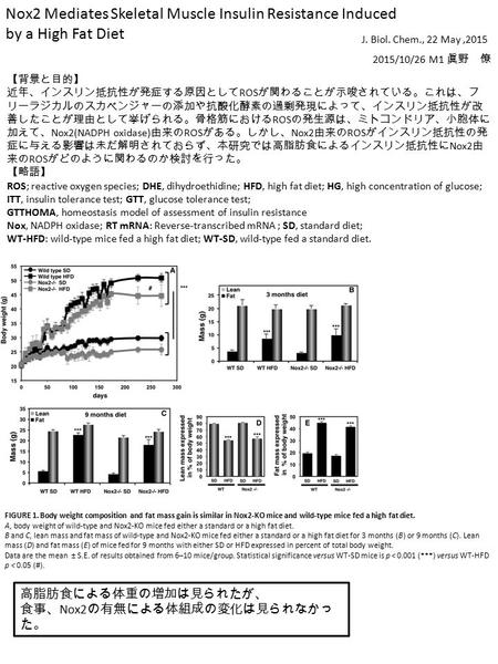 Nox2 Mediates Skeletal Muscle Insulin Resistance Induced by a High Fat Diet J. Biol. Chem., 22 May,2015 2015/10/26 M1 眞野 僚 【背景と目的】 近年、インスリン抵抗性が発症する原因として.