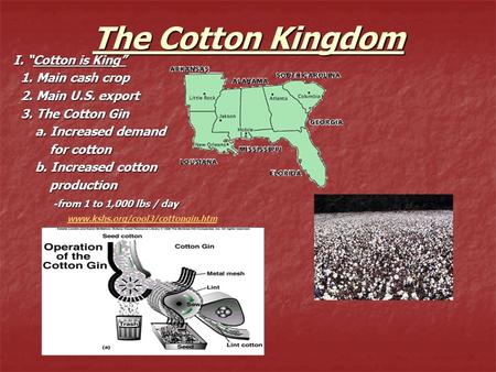 "The Cotton Kingdom I. ""Cotton is King"" 1. Main cash crop 1. Main cash crop 2. Main U.S. export 2. Main U.S. export 3. The Cotton Gin 3. The Cotton Gin."