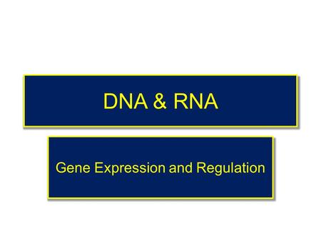 DNA & RNA Gene Expression and Regulation Gene Regulation How Does A Cell Know? Which Gene To Express Which Gene To Express& Which Gene Should Stay Silent?