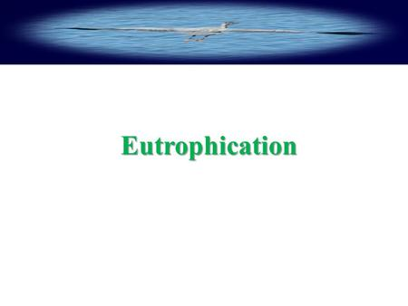 Eutrophication Eutrophication.  What is Eutrophication?  Step by step Eutrophication process  Effects on water quality, treatment costs, compliance.