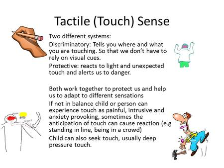 Tactile (Touch) Sense Two different systems: Discriminatory: Tells you where and what you are touching. So that we don't have to rely on visual cues. Protective: