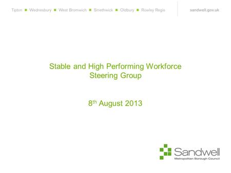 Stable and High Performing Workforce Steering Group 8 th August 2013.