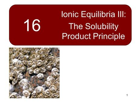 1 16 Ionic Equilibria III: The Solubility Product Principle.
