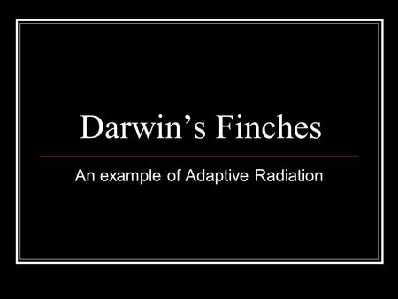 How Does Adaptive Radiation Differ From Natural Selection