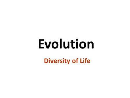 1 Evolution Diversity of Life copyright cmassengale.