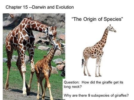 Chapter 15 --Darwin and Evolution