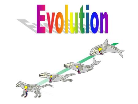 What is Evolution? A change in an organism over time Process in which modern organisms have descended from ancient organisms Populations evolve, NOT individuals.