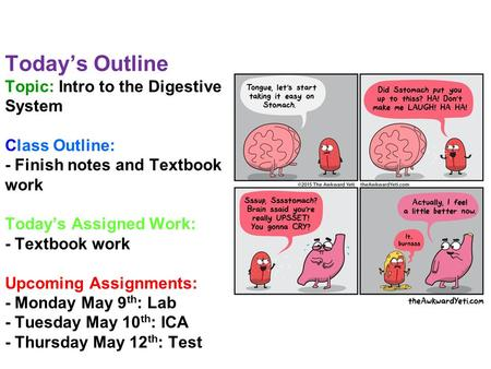 Today's Outline Topic: Intro to the Digestive System Class Outline: - Finish notes and Textbook work Today's Assigned Work: - Textbook work Upcoming Assignments: