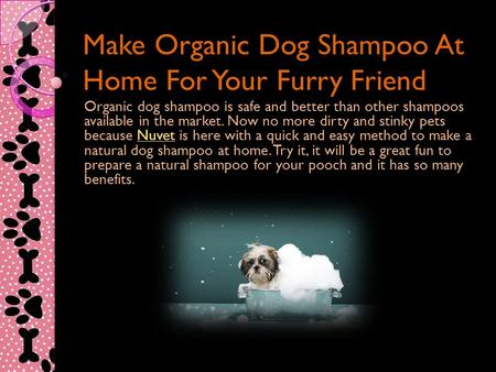 Make Organic Dog Shampoo At Home For Your Furry Friend Organic dog shampoo is safe and better than other shampoos available in the market. Now no more.