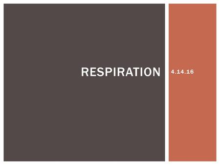 4.14.16 RESPIRATION.  Gas exchange  4 tasks involved 1.Pulmonary ventilation 2.External respiration 3.Respiratory gas transport 4.Internal respiration.