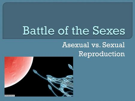 Asexual vs. Sexual Reproduction.  Parent cell first copies its DNA  Then divides into 2 separate cells  New cells have a complete copy of parent's.