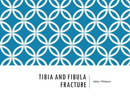 TIBIA AND FIBULA FRACTURE Abby Whitacre. ANATOMY The tibia and fibula are both located in the lower leg. The fibula is the outer bone and the tibia is.
