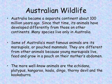 Australian Wildlife Australia became a separate continent about 100 million years ago. Since that time, its animals have developed differently from those.