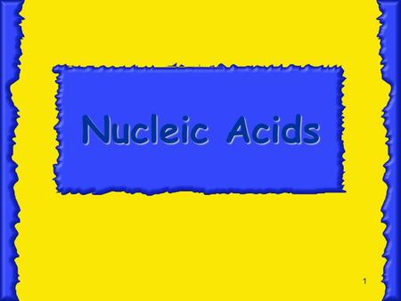 1 Nucleic Acids 2 Structure of DNA  made of monomers called nucleotides  nucleotides composed of a phosphate, deoxyribose sugar, and a nitrogen-containing.