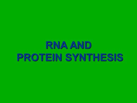 RNA AND PROTEIN SYNTHESIS. Central Dogma of Biology! Genes are codes for making polypeptides (proteins) The nitrogenous bases (ATCG's) contain the code!