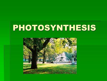PHOTOSYNTHESIS. INTRO  All living things need energy.  Our energy comes from FOOD!