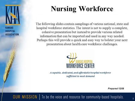 1 Nursing Workforce The following slides contain samplings of various national, state and hospital workforce statistics. The intent is not to supply a.