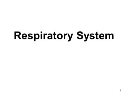 1 Respiratory System. 2 What are the major organs and functions of the respiratory system? Organs: Air passages, lungs Function: Carries air into and.