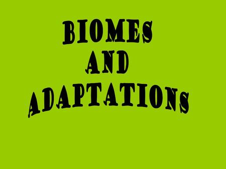 Adaptation An adaptation is a characteristic or trait that helps an organism survive in its environment Adaptation makes an organisms more suited to its.