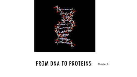 FROM DNA TO PROTEINS Chapter 8. KEY CONCEPT 8.1 DNA was identified as the genetic material through a series of experiments.