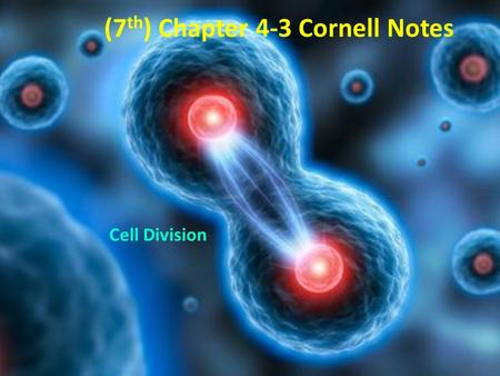 (7 th ) Chapter 4-3 Cornell Notes Cell Division. Chapter 4-3: Key Questions What events take place during the three stages of the cell cycle? Answer 1: