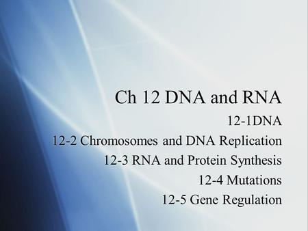 Ch 12 DNA and RNA 12-1DNA 12-2 Chromosomes and DNA Replication 12-3 RNA and Protein Synthesis 12-4 Mutations 12-5 Gene Regulation 12-1DNA 12-2 Chromosomes.