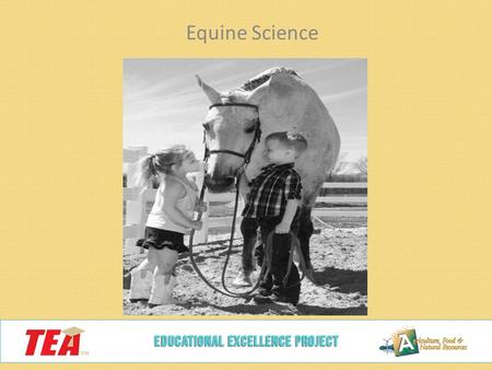 Equine Science. TYPES OF INJECTIONS AND INJECTION SITES MAINTAINING HEALTH AND SOUNDNESS INJECTIONS (C)(2)(C)