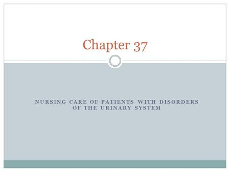 NURSING CARE OF PATIENTS WITH DISORDERS OF THE URINARY SYSTEM Chapter 37.
