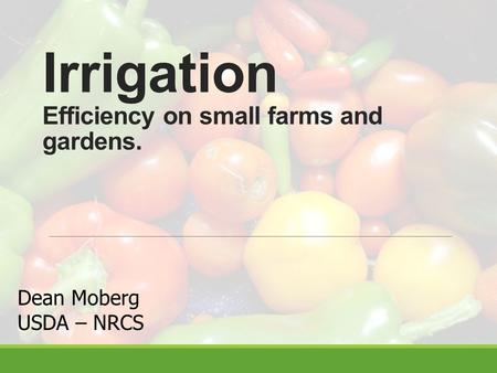 Irrigation Efficiency on small farms and gardens. Dean Moberg USDA – NRCS.