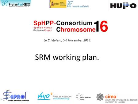 SRM working plan. La Cristalera, 5-6 November 2013.