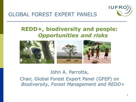 1 REDD+, biodiversity and people: Opportunities and risks John A. Parrotta, Chair, Global Forest Expert Panel (GFEP) on Biodiversity, Forest Management.