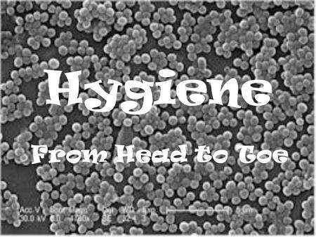 "Hygiene From Head to Toe Hygiene From the Greek word ""hygies"" Meaning ""healthy, sound"""
