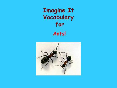 Imagine It Vocabulary for Ants!. insect I don't like to see an insect in my house. A six-legged bug.