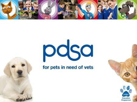 What does PDSA do ? We care for the sick and injured pets of people in need…. PDSA is a veterinary charity. … and teach people about looking after their.
