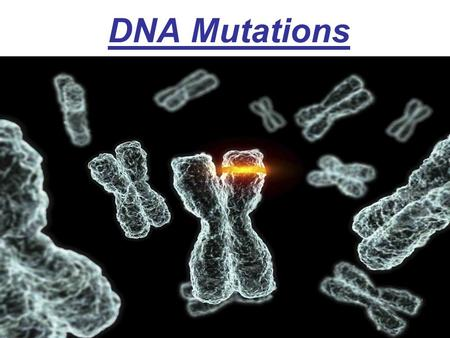 DNA Mutations. Remember that during DNA replication, the DNA makes an exact copy of itself before it divides. DNA replication is not always accurate.