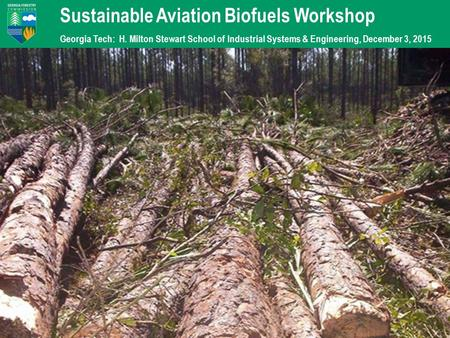 Sustainable Aviation Biofuels Workshop Georgia Tech: H. Milton Stewart School of Industrial Systems & Engineering, December 3, 2015.