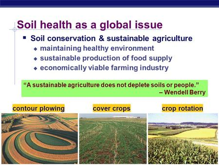 AP Biology Soil health as a global issue  Soil conservation & sustainable agriculture  maintaining healthy environment  sustainable production of food.