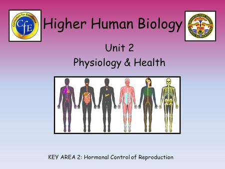Higher Human Biology Unit 2 Physiology & Health KEY AREA 2: Hormonal Control of Reproduction.