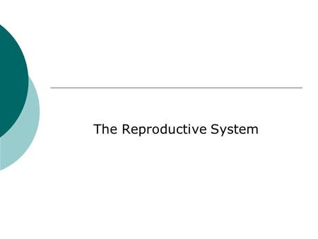 The Reproductive System. Review of Endocrine System.
