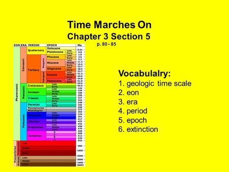 Time Marches On Chapter 3 Section 5 p. 80 - 85 Vocabulalry: 1. geologic time scale 2. eon 3. era 4. period 5. epoch 6. extinction.