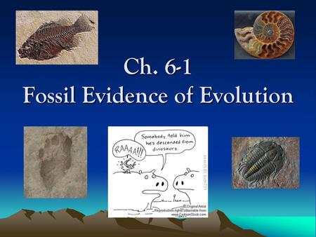 "Ch. 6-1 Fossil Evidence of Evolution. ""Biological Evolution"" This is what people usually think of when they hear the word Evolution. –But it simply means."